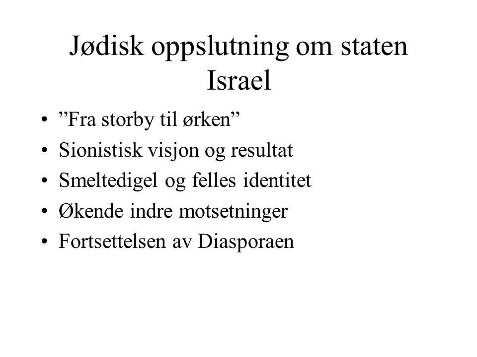 Jødisk oppslutning om staten Israel
