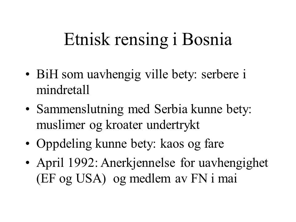 Etnisk rensing i Bosnia