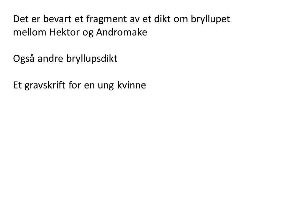 Det er bevart et fragment av et dikt om bryllupet mellom Hektor og Andromake