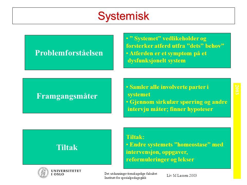 Ulike systemer MAKROSYSTEMET (For eksempel Staten) EKSOSYSTEMET