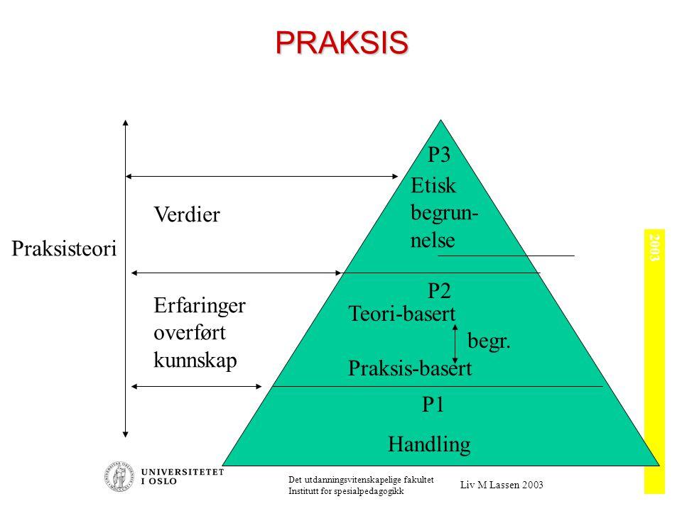 Hypoteser, teori og modell