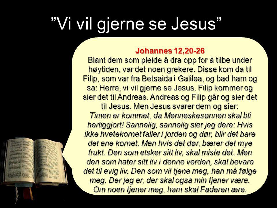 Vi vil gjerne se Jesus