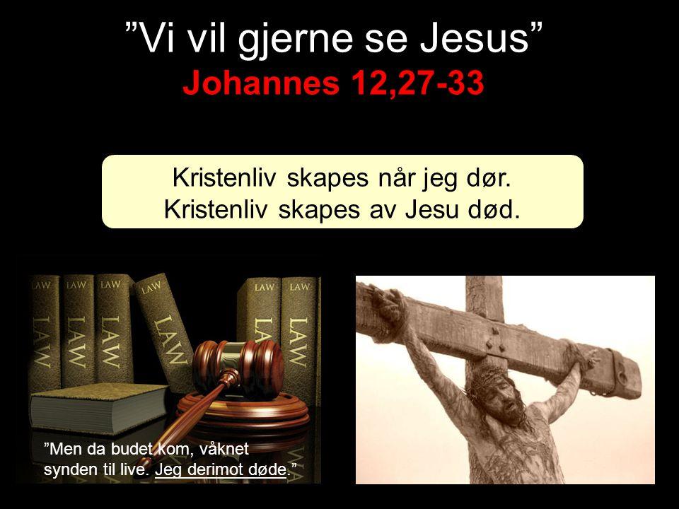 Vi vil gjerne se Jesus Johannes 12,27-33