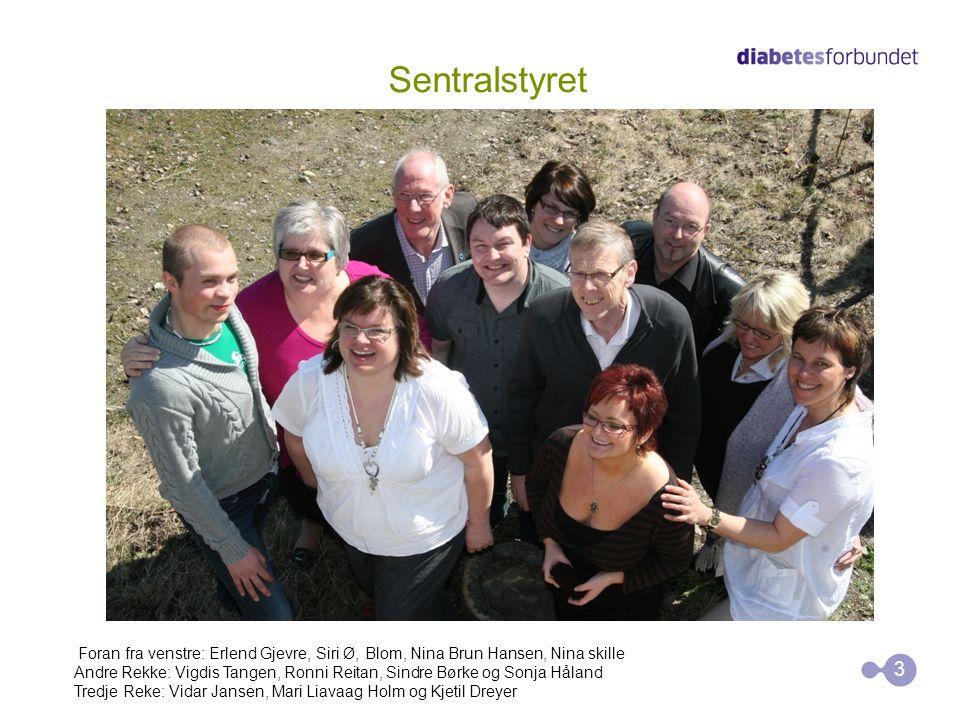 Sentralstyret Foran fra venstre: Erlend Gjevre, Siri Ø, Blom, Nina Brun Hansen, Nina skille.