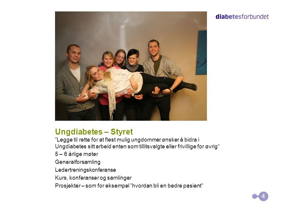 Ungdiabetes – Styret