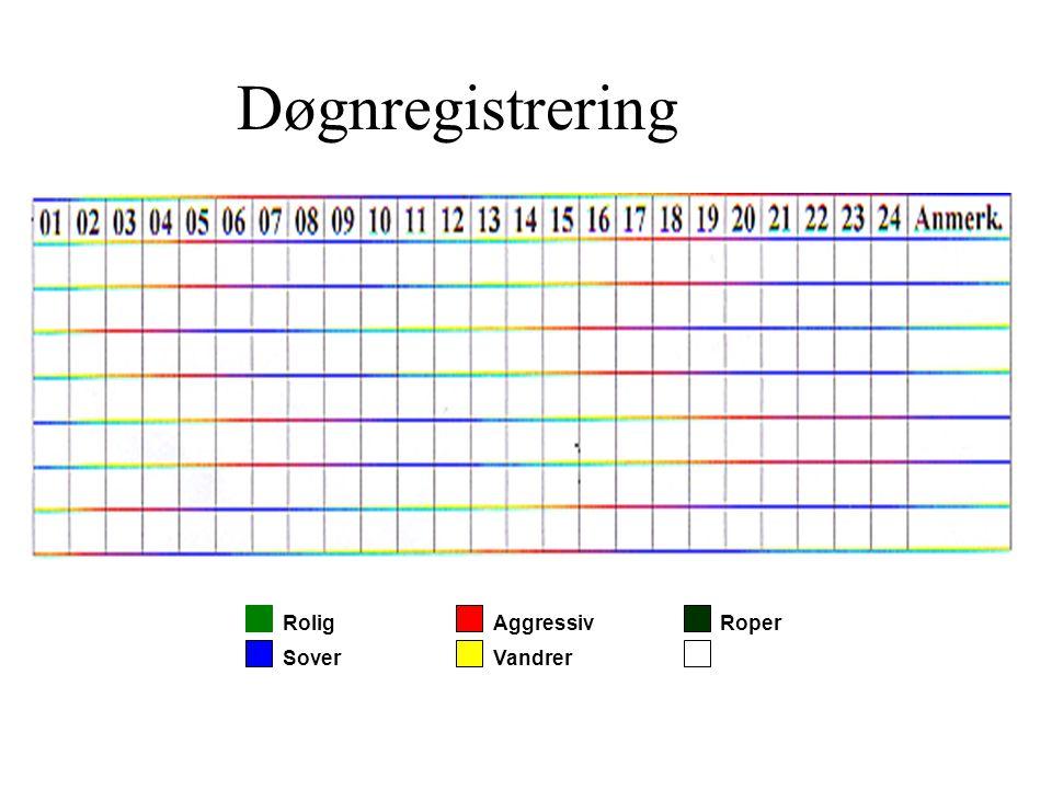 Døgnregistrering Rolig Aggressiv Roper Sover Vandrer