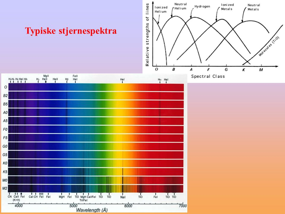 Typiske stjernespektra