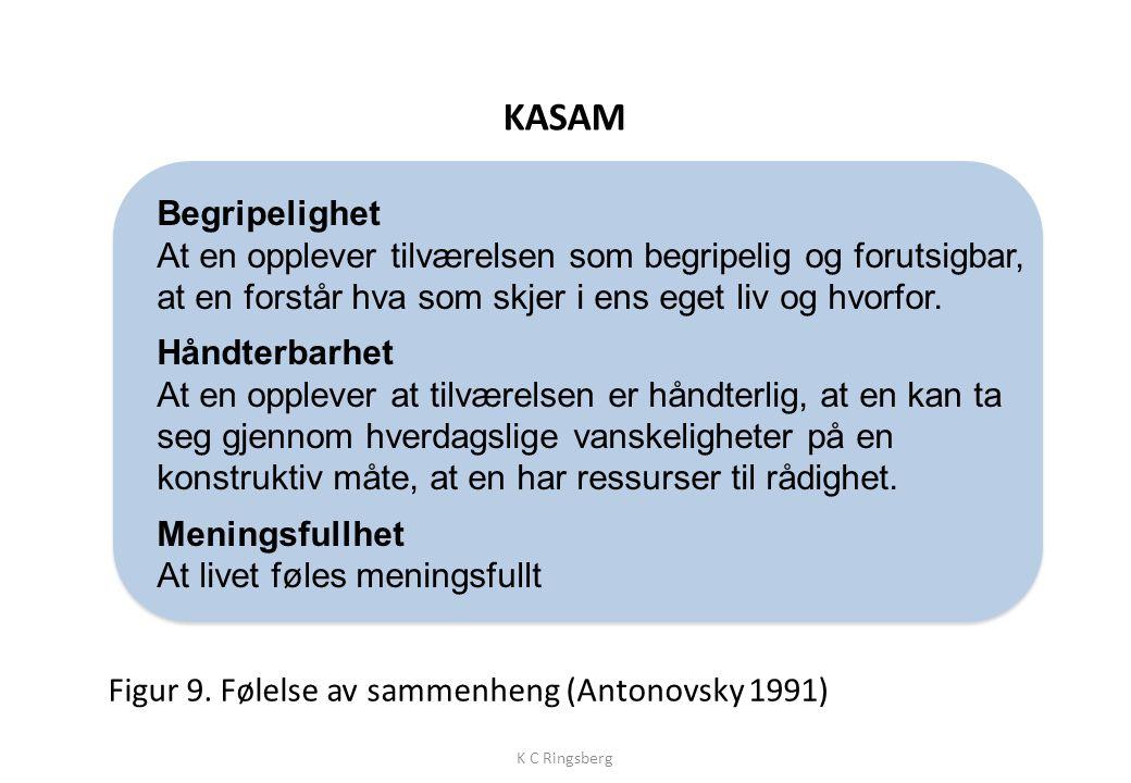Figur 8. Salutogenesis. K C Ringsberg