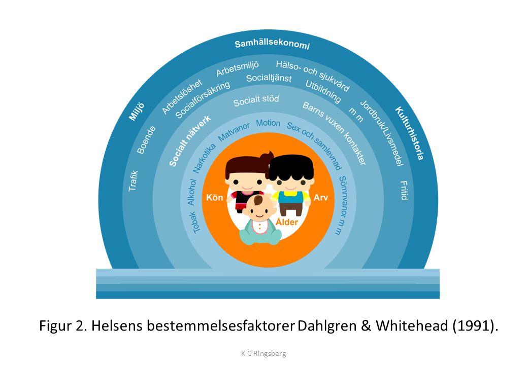 WHO deler inn helsens bestemmelsesfaktorer i henhold til følgende: