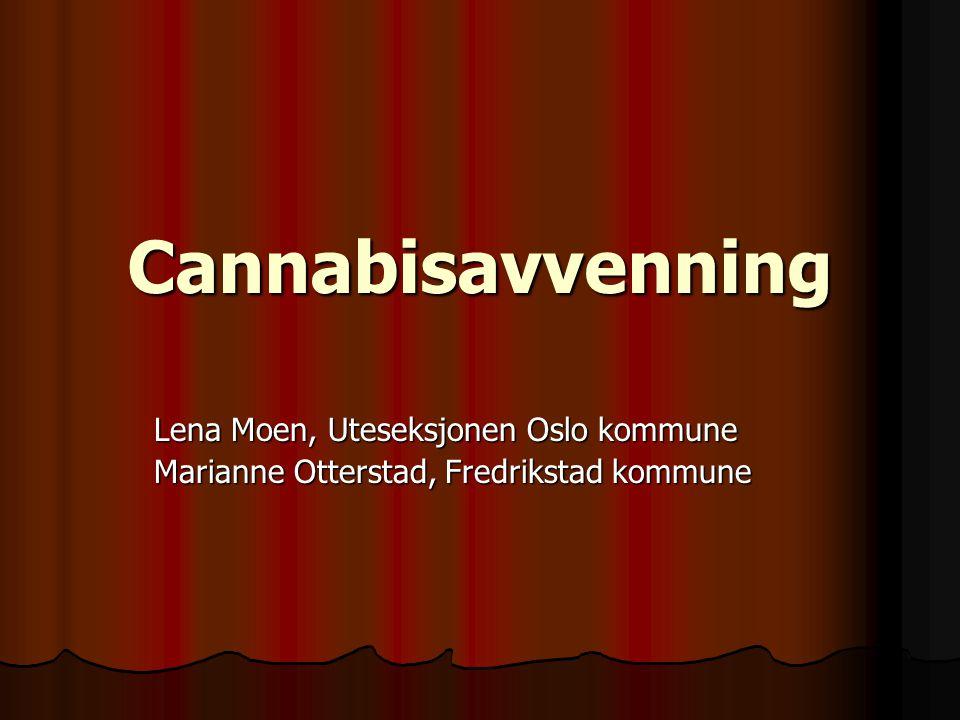 Cannabisavvenning Lena Moen, Uteseksjonen Oslo kommune