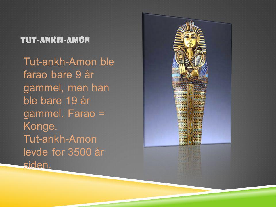 Tut-ankh-Amon levde for 3500 år siden.