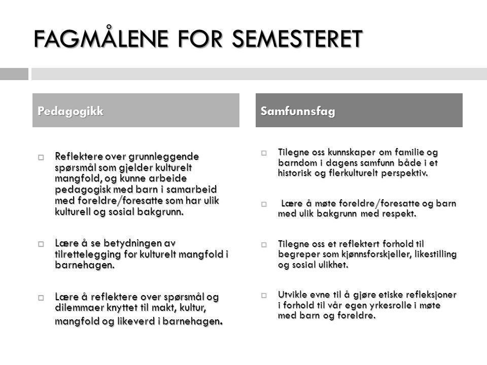 FAGMÅLENE FOR SEMESTERET