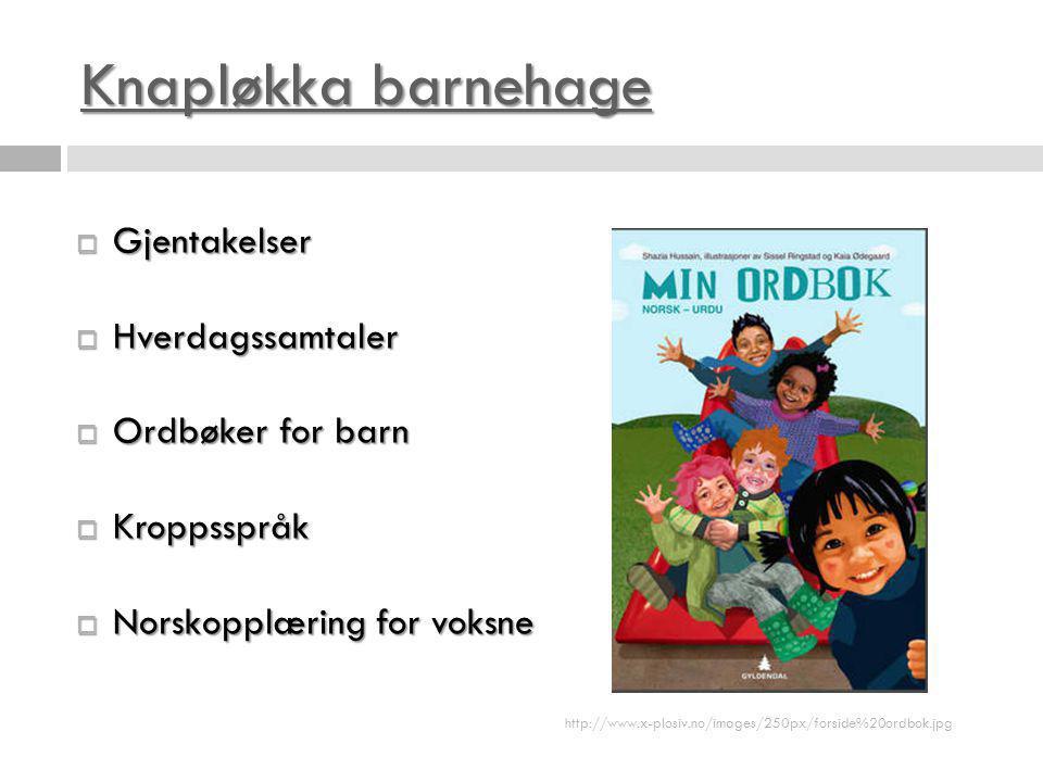 Knapløkka barnehage Gjentakelser Hverdagssamtaler Ordbøker for barn