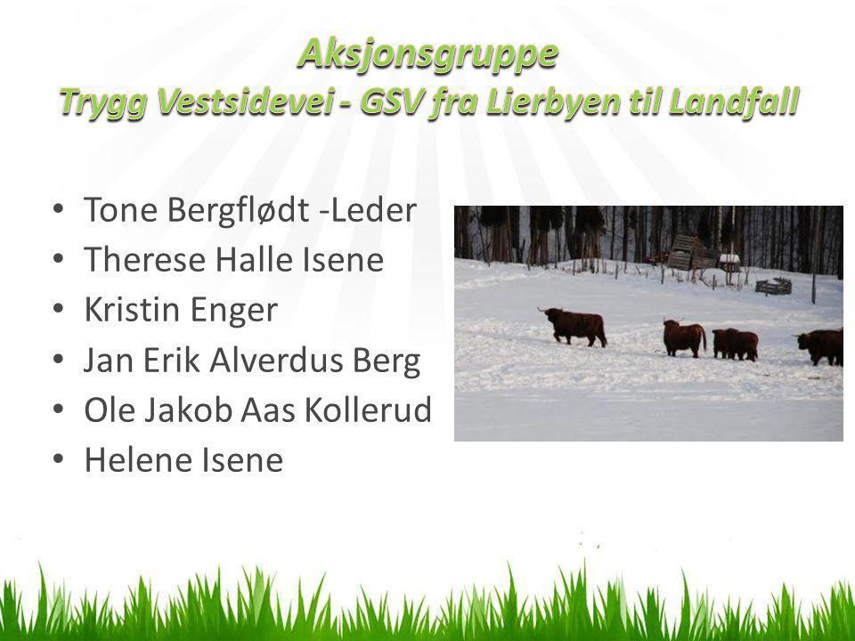 Aksjonsgruppe Trygg Vestsidevei - GSV fra Lierbyen til Landfall