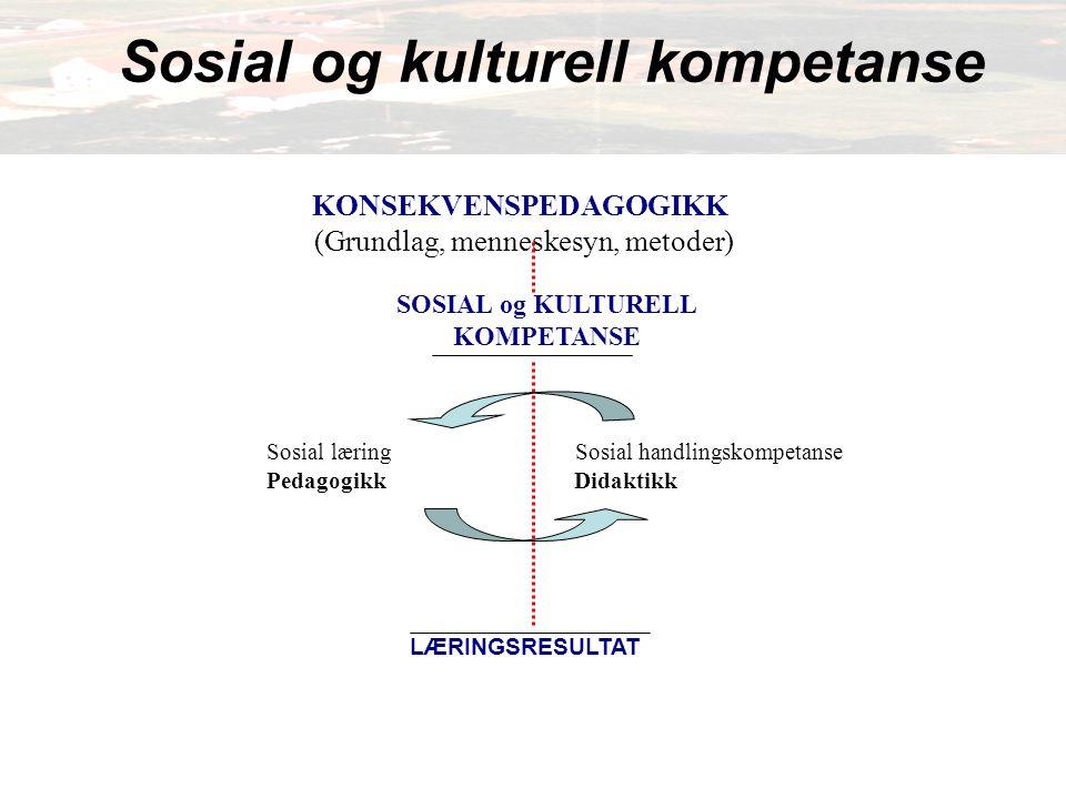 SOSIAL og KULTURELL KOMPETANSE
