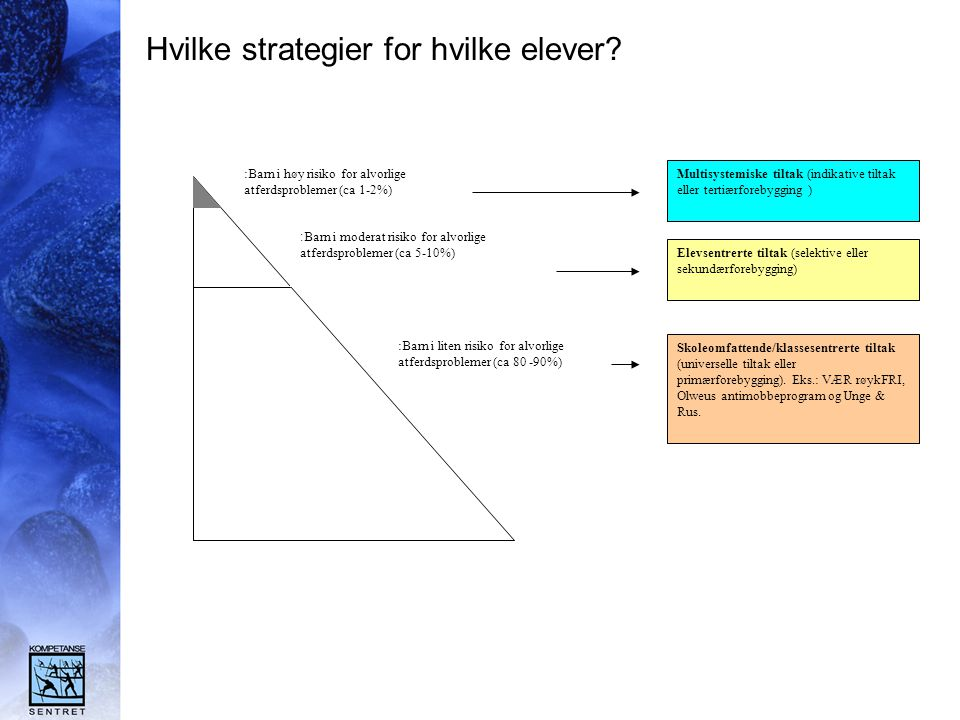 Hvilke strategier for hvilke elever