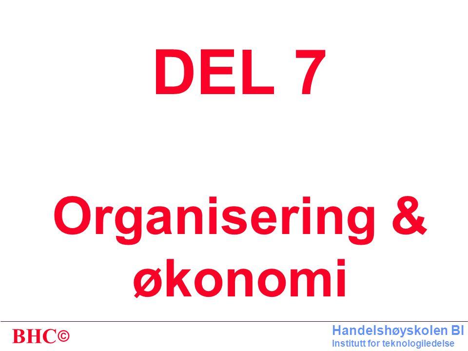DEL 7 Organisering & økonomi