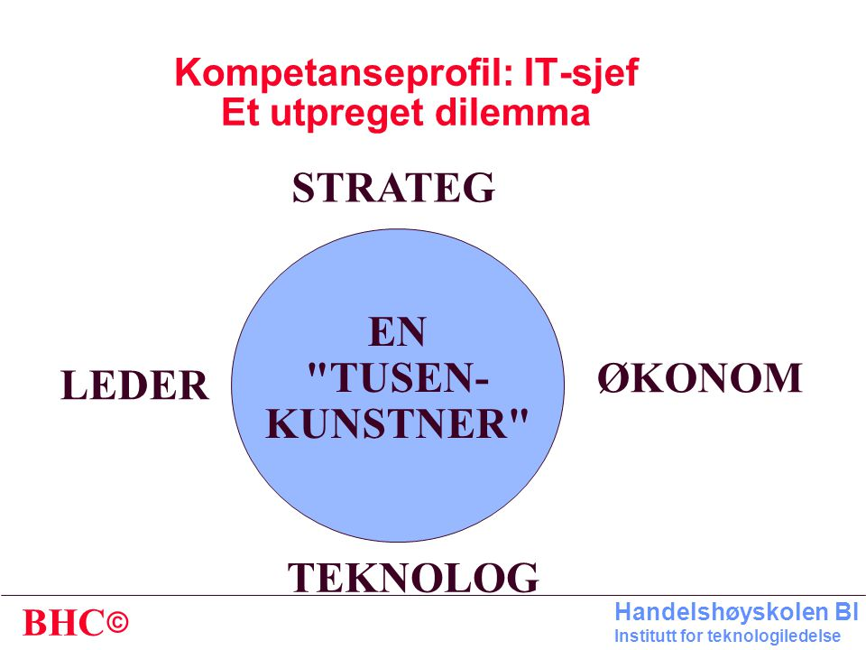 Kompetanseprofil: IT-sjef Et utpreget dilemma