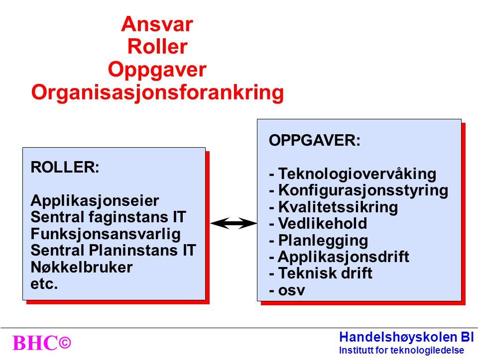 Ansvar Roller Oppgaver Organisasjonsforankring