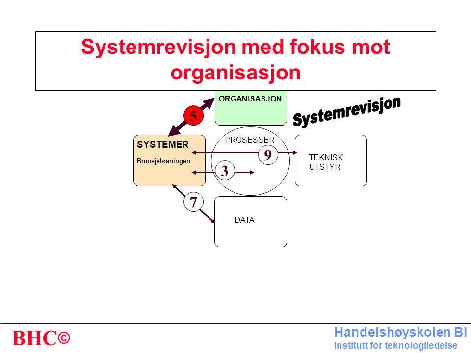 Systemrevisjon med fokus mot organisasjon