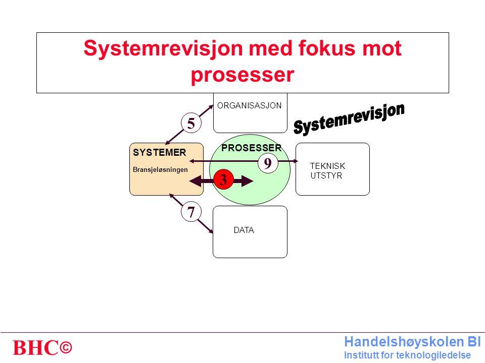 Systemrevisjon med fokus mot prosesser