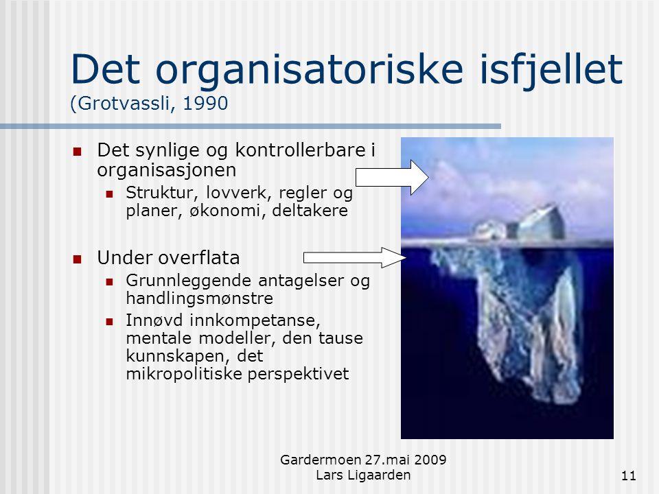 Det organisatoriske isfjellet (Grotvassli, 1990