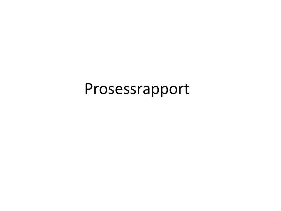Prosessrapport