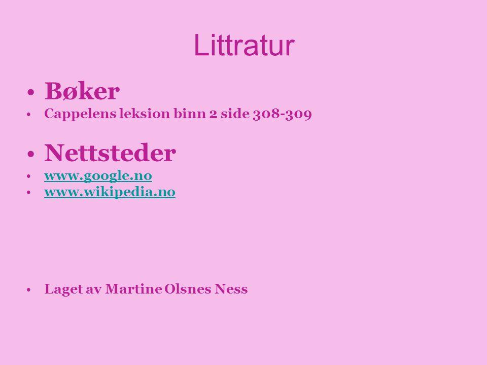 Littratur Bøker Nettsteder Cappelens leksion binn 2 side 308-309