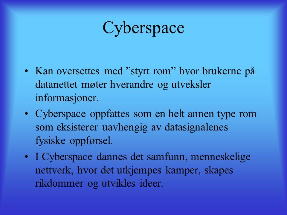 Cyberspace Kan oversettes med styrt rom hvor brukerne på datanettet møter hverandre og utveksler informasjoner.