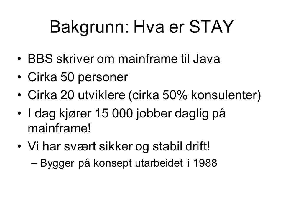 Bakgrunn: Hva er STAY BBS skriver om mainframe til Java