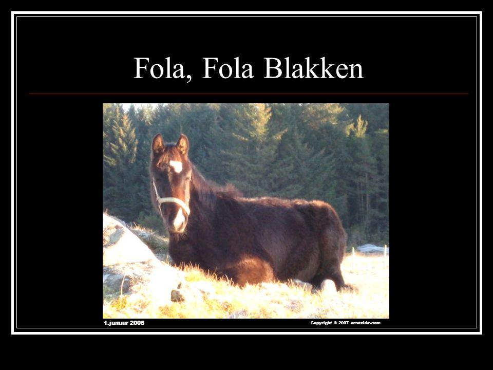 Fola, Fola Blakken 1.januar 2008 Copyright ® 2007 arneeide.com