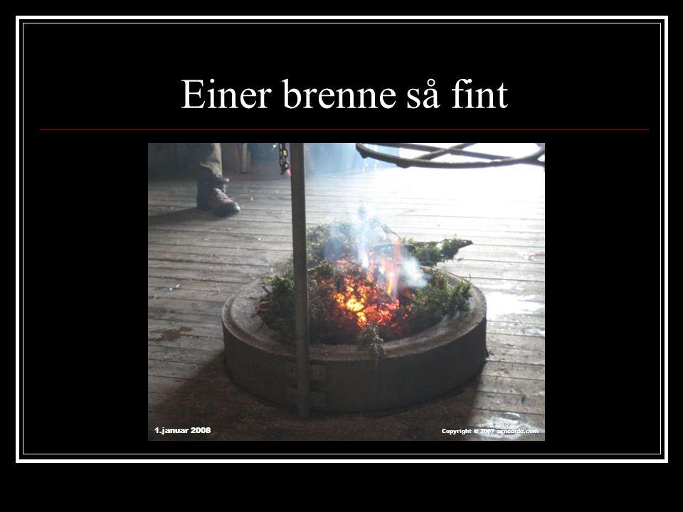 Einer brenne så fint 1.januar 2008 Copyright ® 2007 arneeide.com