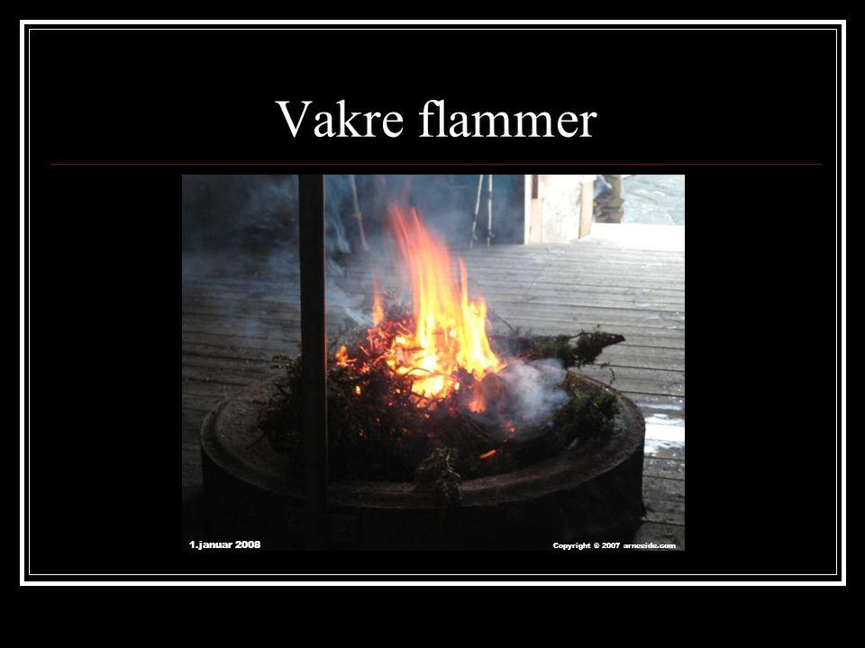 Vakre flammer 1.januar 2008 Copyright ® 2007 arneeide.com