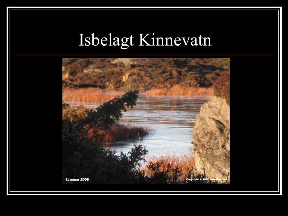 Isbelagt Kinnevatn 1.januar 2008 Copyright ® 2007 arneeide.com