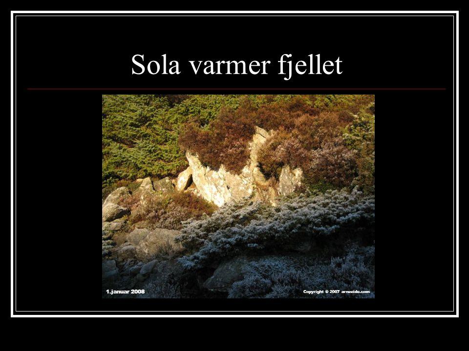 Sola varmer fjellet 1.januar 2008 Copyright ® 2007 arneeide.com