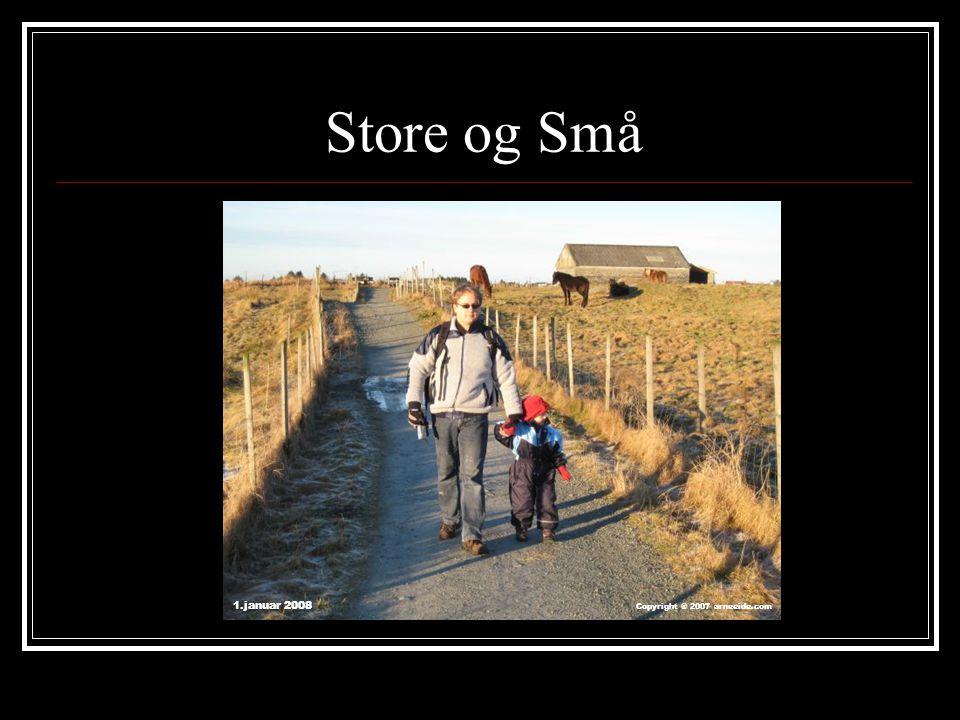 Store og Små 1.januar 2008 Copyright ® 2007 arneeide.com