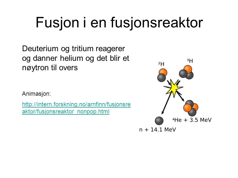 Fusjon i en fusjonsreaktor