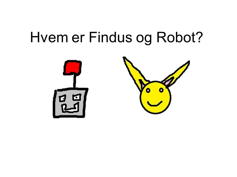 Hvem er Findus og Robot