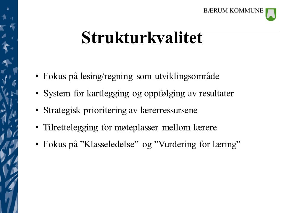 Strukturkvalitet Fokus på lesing/regning som utviklingsområde