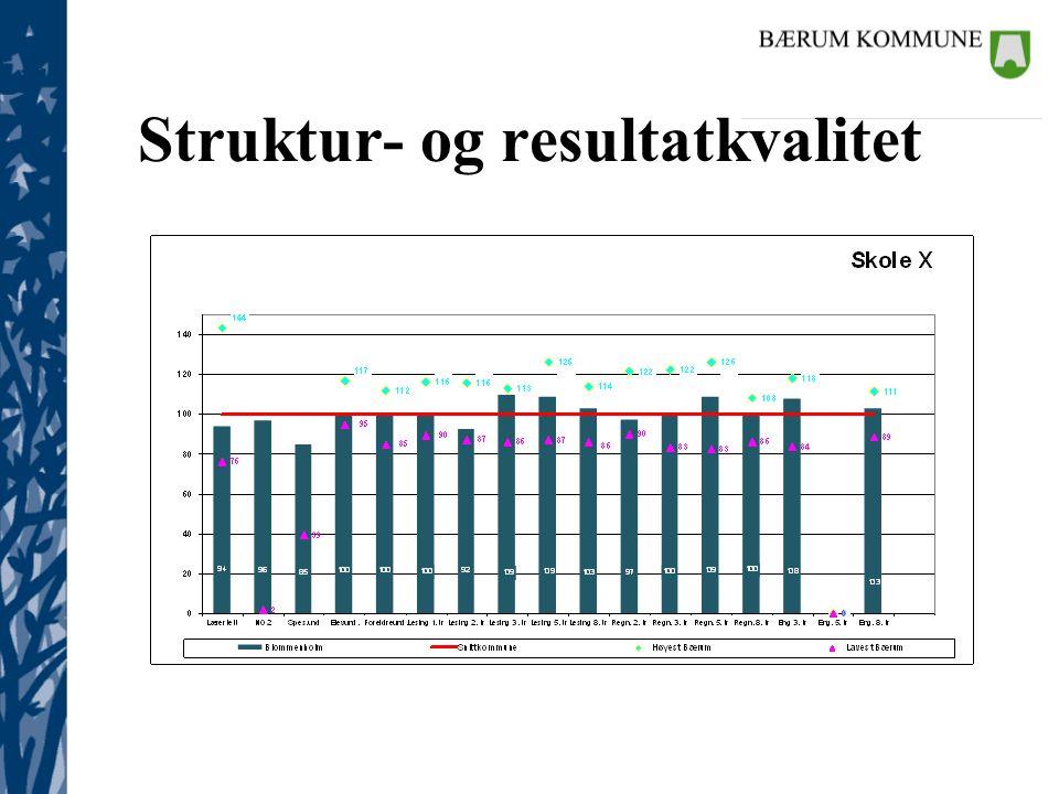 Struktur- og resultatkvalitet