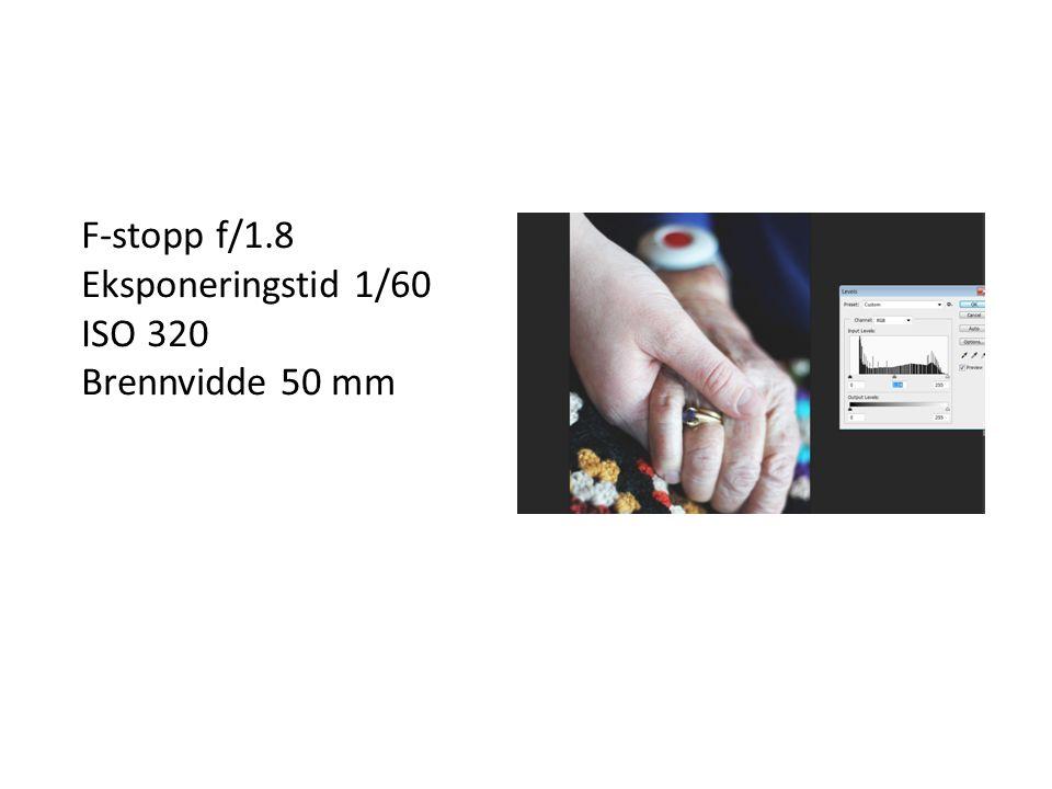 F-stopp f/1.8 Eksponeringstid 1/60 ISO 320 Brennvidde 50 mm