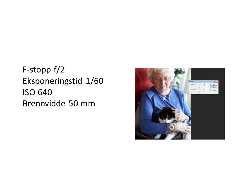 F-stopp f/2 Eksponeringstid 1/60 ISO 640 Brennvidde 50 mm