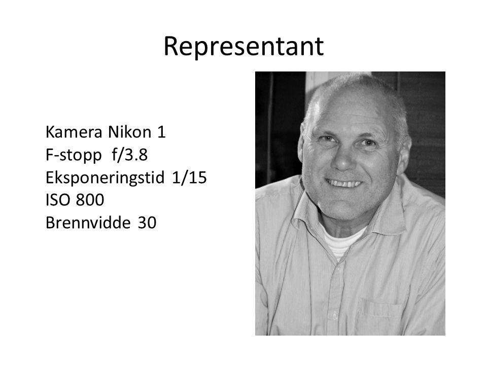 Representant Kamera Nikon 1 F-stopp f/3.8 Eksponeringstid 1/15 ISO 800