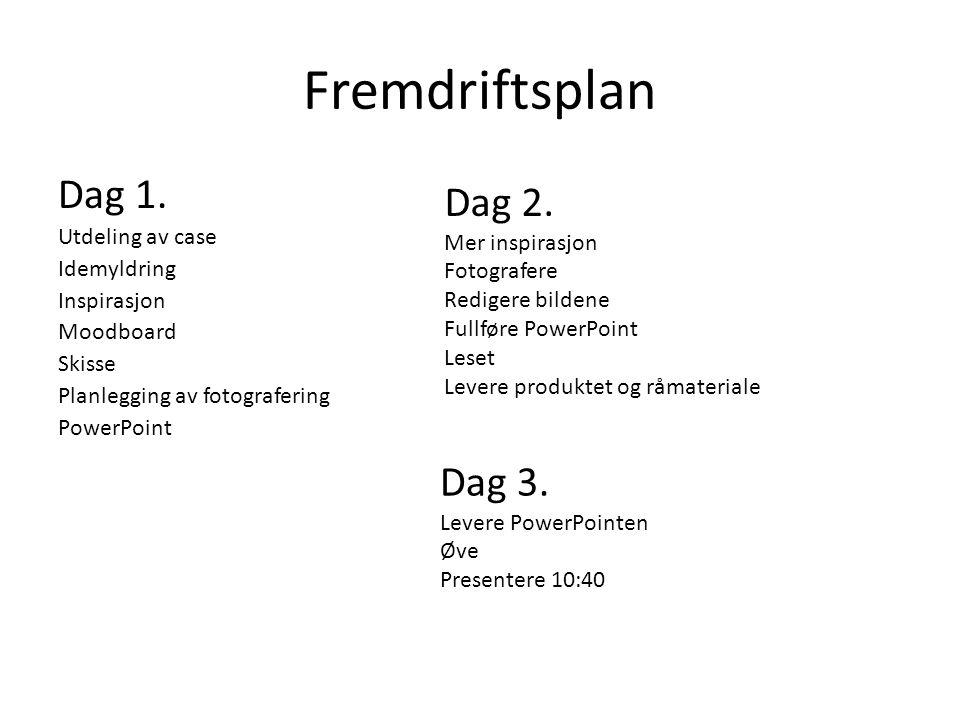 Fremdriftsplan Dag 1. Dag 2. Dag 3. Utdeling av case Idemyldring