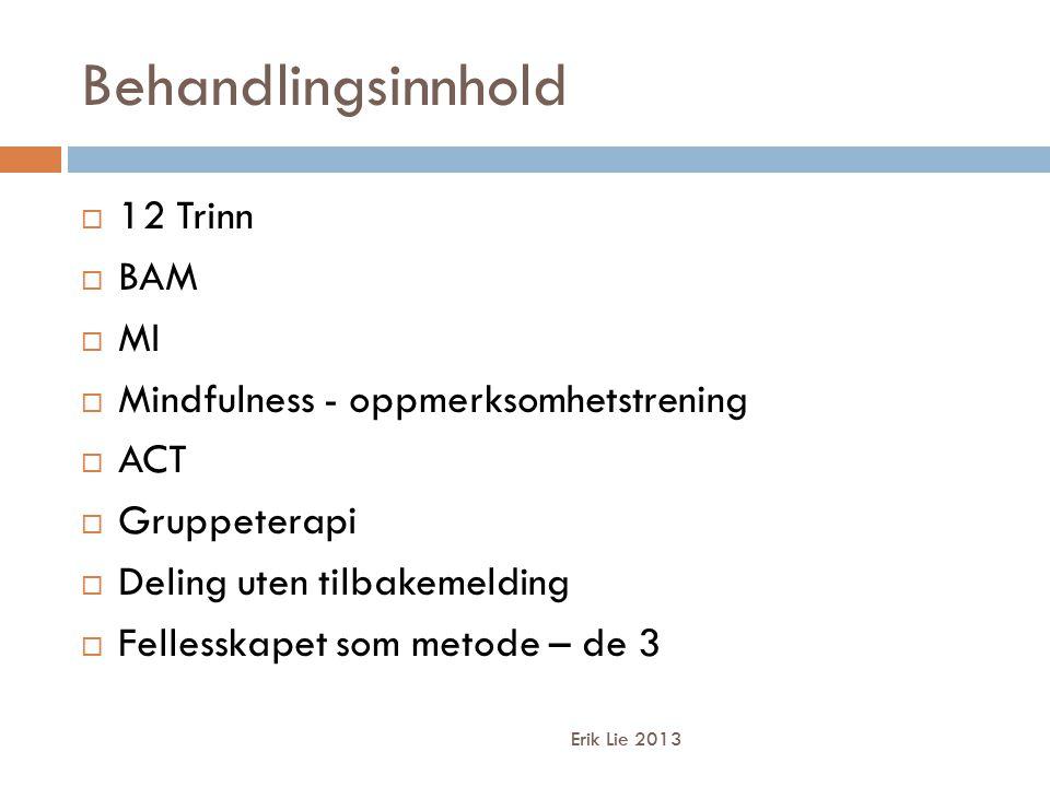 Behandlingsinnhold 12 Trinn BAM MI Mindfulness - oppmerksomhetstrening