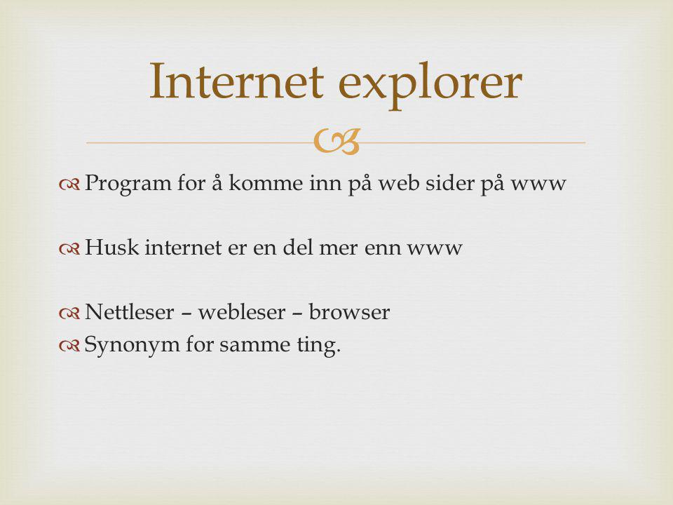 Internet explorer Program for å komme inn på web sider på www
