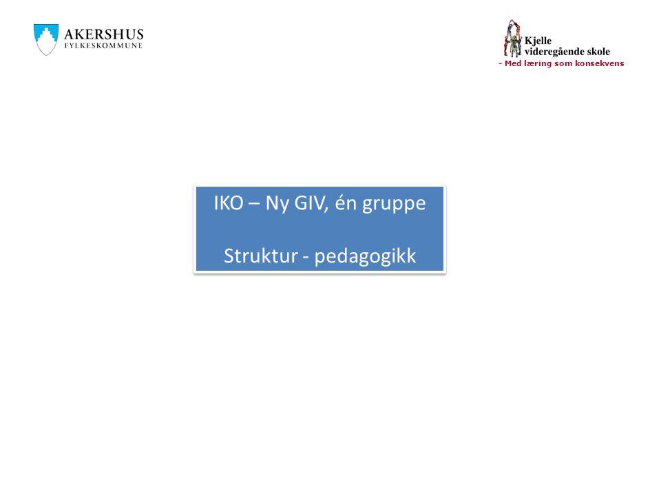 IKO – Ny GIV, én gruppe Struktur - pedagogikk