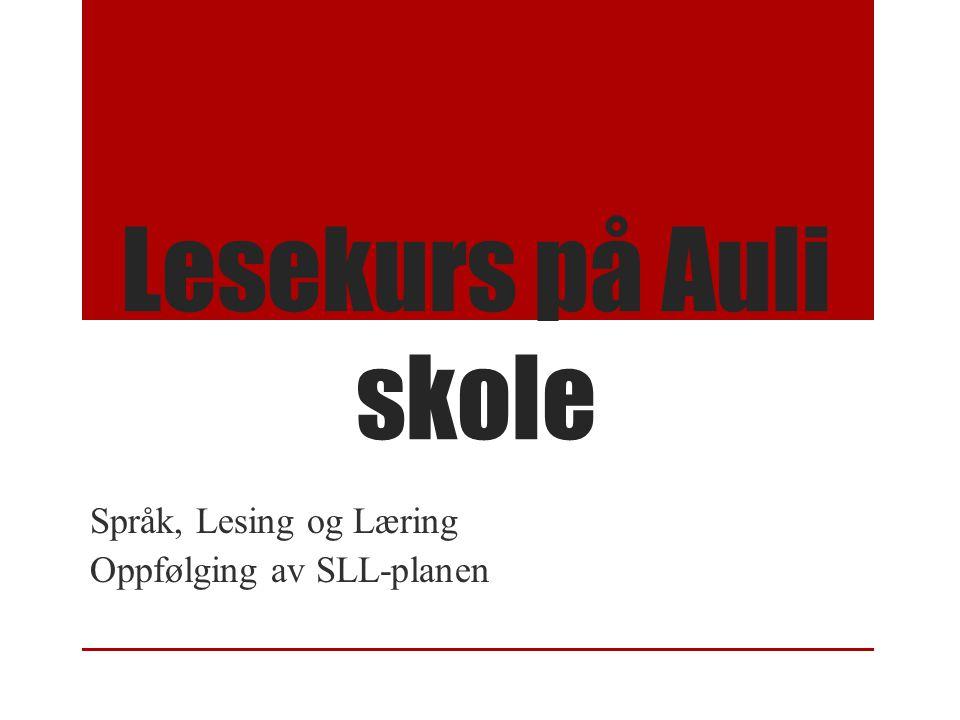 Språk, Lesing og Læring Oppfølging av SLL-planen