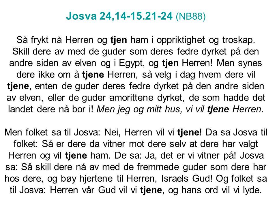Josva 24,14-15.21-24 (NB88) Så frykt nå Herren og tjen ham i oppriktighet og troskap.