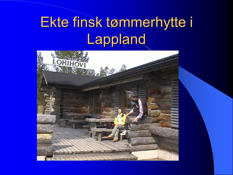 Ekte finsk tømmerhytte i Lappland